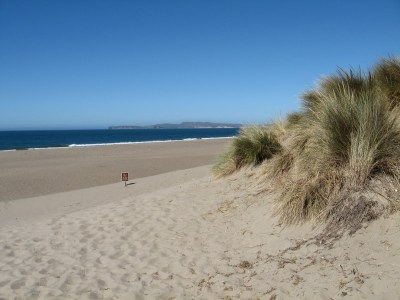 Limantour Beach, looking north